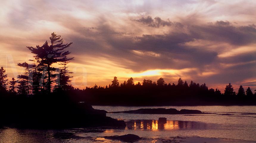 Coastal landscape, Mt Desert Island, Maine