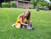Girl, child playing with cat. Yard, countryside, rural homestead in Estonia. Happy smiling childhood.