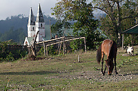 With the town's main church in the background, a horse grazes in a field in the mountain town of Laclubar, Timor-Leste on Wednesday, Oct. 19th, 2011.  Photographer: Daniel J. Groshong/The Hummingfish Foundation