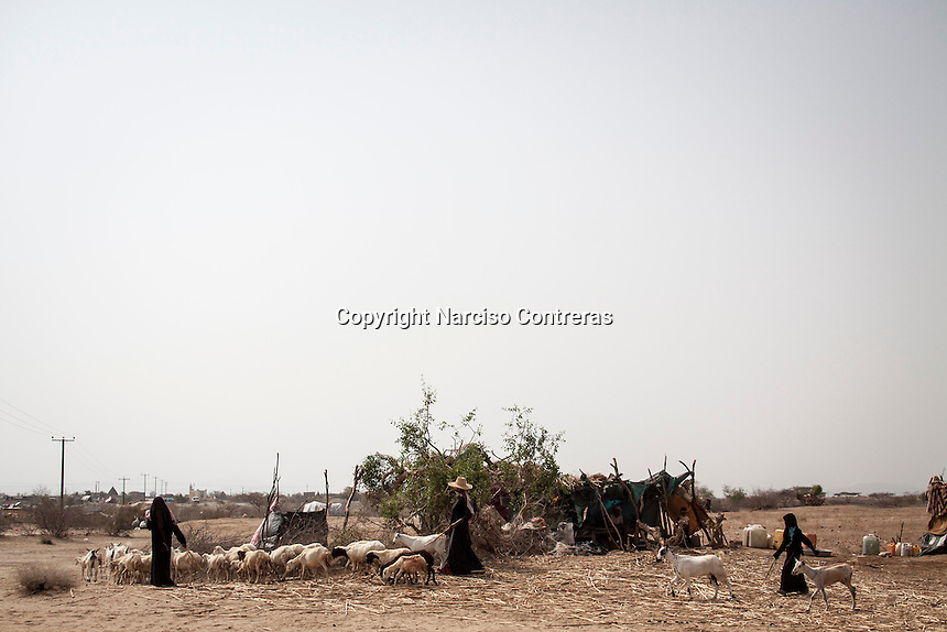 Tuesday 07 July, 2015: Displaced women from the heavy fighting in Haradh bordertown are seen in Al Manjoorah, a temporary settlement at the outskirts of Beni Hassan in Hajjah province, Northwest of Yemen. (Photo/Narciso Contreras)