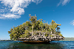 Karst limestone walls and islands of Raja Ampat