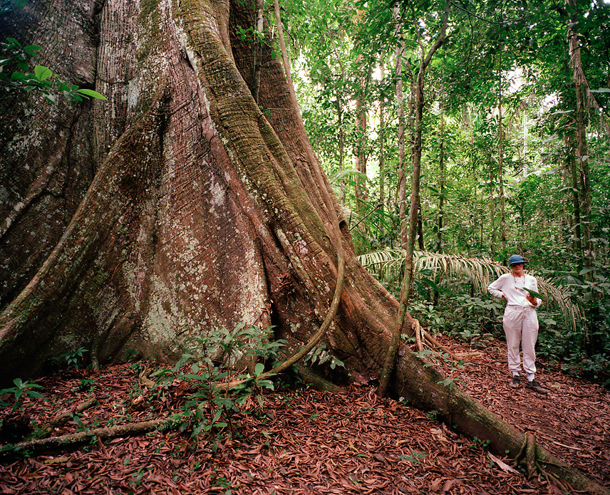 Female hiker in the rainforest, Tambopata Nature Reserve, Peru, South America
