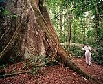Female hiker in the rainforest, Tambopata Nature Reserve, Peru, South America