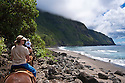 Molokai Mule Ride tour along beach at Kalaupapa Peninsula, Molokai, Hawaii.
