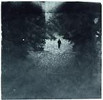 A figure walking under trees