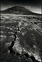 Europe, Espagne, Iles Canaries, Lanzarote:   paysage volcanique  // Europe, Spain, Canary Islands, Lanzarote: around Teguise :  Volcanic landscape