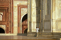 India, Uttar Pradesh, Taj Mahal, worker cleaning exterior walls.