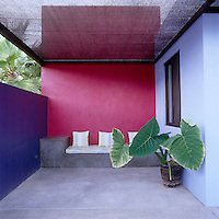 The lleaves of a large tropical plant create an interesting counterpoint to the pink and purple walls of this covered terrace in Mexico