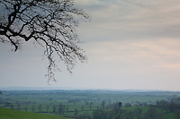 Patchwork of pastoral fields at dusk near Doynton seen from Dyrham on the Cotswold Way