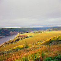 Peace River Valley and Grain Fields near Hudson's Hope, Northern BC, British Columbia, Canada