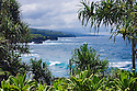 Hana coast view, framed by lauhala trees and ti plants at Kahanu Garden; National Tropical Botanical Garden, Maui, Hawaii.