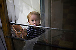 James Ferrell peers through a torn screen door at their home in Lincoln, CA May 13, 2009.