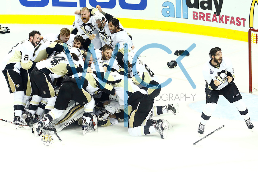 Members of the Pittsburgh Penguins celebrate their 3-1 win against the San Jose Sharks to win the Stanley Cup during game six of the Stanley Cup Final at SAP Center in San Jose, California on June 12, 2016. (Photo by Jared Wickerham / DKPS)