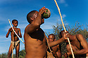 Botswana, Kalahari, bushman (san) family gathering food, man drinking liquid of Nara melon (Acanthosicyos horridus)