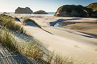 White sand dunes on Wharariki Beach on west coast of South Island, Nelson Region, South Island, New Zealand, NZ