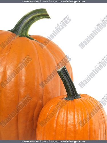 Closeup of a pumpkin isolated on white background