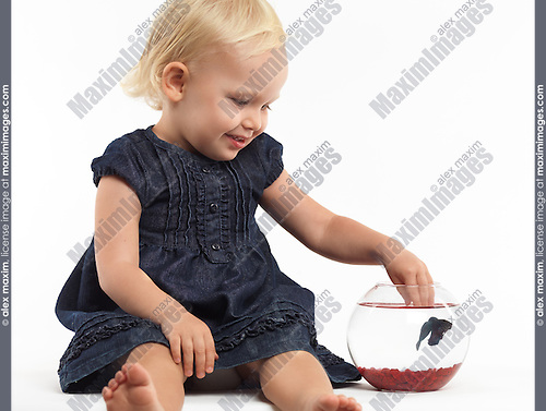 Portrait of a smiling two year old girl playing with a fish in a bowl isolated on white background