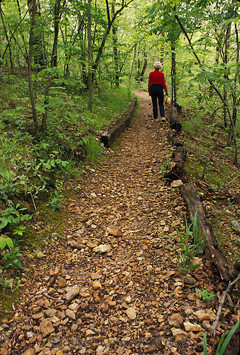 The photographer walks away from us along a wooded trail, Missouri USA