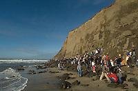 Fans watch the 2008 Mavericks Surf Contest from the beachin Half Moon Bay, Calif., Saturday, January 12, 2008...Photo by David Calvert/isiphotos.com