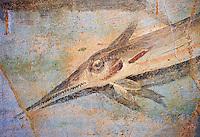 Roman Fresco detail of fishes marine life from the second quarter of the first century AD. (mosaico fauna marina da porto fluviale di san paolo), museo nazionale romano ( National Roman Museum), Rome, Italy. inv. 121462 .