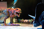 A Tyrannonsurus Rex mother (L) defends it's baby against an Torosaurs attack at the Tacoma Dome in Tacoma, Washington on July, 11, 2007. 15 dinosaurs, which roamed the earth about 208 millions years ago, have been brought back to life via truck batteries, hydraulics and puppeteers in the 90-minute show, Walking with Dinosaurs - The Live Experience, based on the award-winning BBC Television series kicked off it's seven city Summer tour in the U.S. and Canada. In the background is Huxley, the paleontologist, played by Jonathan Bliss. (© 2007 Jim Bryant Photography)...