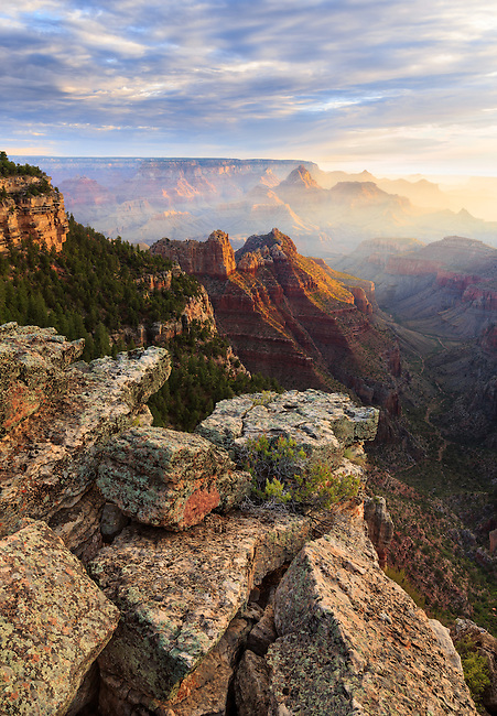 Early morning on the rim of the Grand Canyon. Moisture fills the air as sunlight paints the temples and buttes of the canyon.