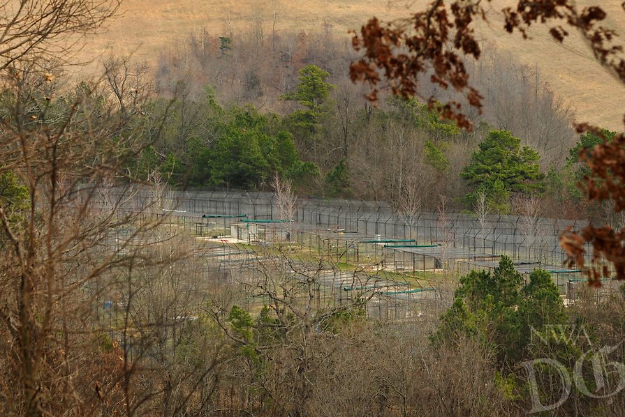 NWA Democrat-Gazette/BEN GOFF @NWABENGOFF<br /> A view of the Rescue Ridge tiger habitats on Thursday March 3, 2016 at Turpentine Creek Wildlife Refuge in Eureka Springs.