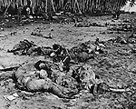 August 21, 1942 - Japanese soldiers killed in the Battle of Tenaru shen they attempted to storm U.S. Marine machine gun postions.