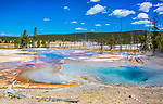 Firehouse Pool is a pretty pool on the Firehole Lake drive in Yellowstone.