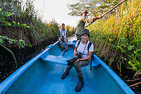 Taking a boat with a guide down the canal leading from Santo Tomás is an excellent way to find the endangered, endemic Zapata Wren, Zapata Sparrow and Zapata Rail.  Zapata Swamp, Cuba.