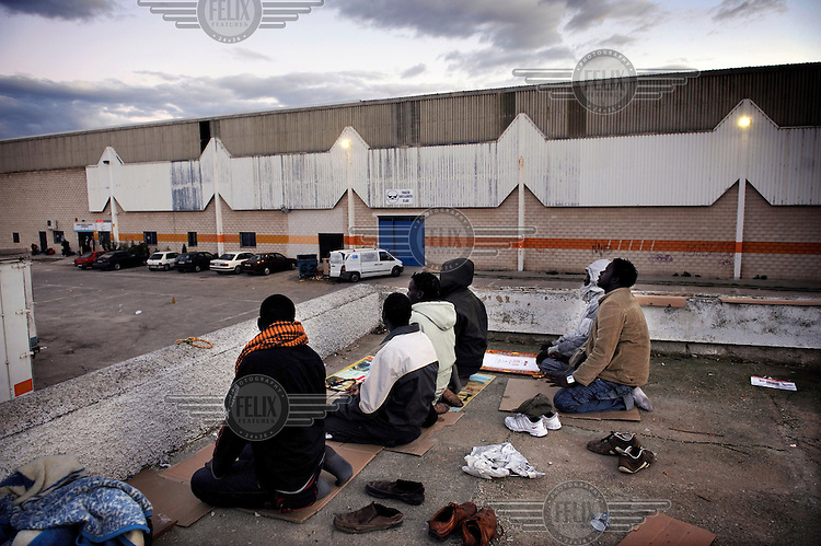 In an industrial park a group of Muslim migrants, from Sub-Saharan Africa, pray at the end of the working day. Many of migrants come to the region to pick olives but this year there is competition for the work. The economic collapse means that work once shunned by the indigenous population is now sought after by unemployed Spaniards.