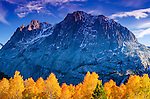 Fall aspen under Carson Peak, Inyo National Forest, Sierra Nevada Mountains, California USA