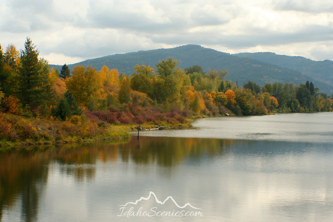Sand creek lined in autumn colors in Sandpoint Idaho.