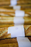 """Baguettes competing for the title of Best Baguette in Paris are lined up before the jury gathers in Paris, France, 5 January 2004. 120 bakers competed in the 2004 edition of the prestigious annual Grand Prix de la Baguette. The title went to Pierre Thilloux from """"La Fournée d?Augustine"""" bakery in the 14th arrondissement of Paris."""