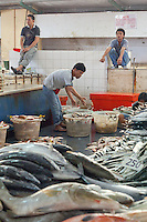 Men working in the fish market in Sandakan, Sabah, Borneo