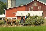 Farming: Traditional