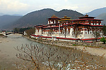 Asia, Bhutan, Punakha. Pungthang Dechen Dzong, also called Punakha Dzong, at the confluence of two rivers.