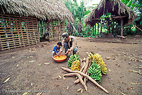 Quechua Indians, father and son, selecting fruit at their home in San José de Uchupiamonas along the Rio Tuichi, lowland tropical rainforest, Madidi National Park, La Paz, Bolivia.