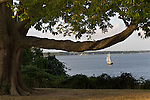 Sailboat on the York River (part of the Chesapeake Bay Watershed) as seen from the Yorktown National Battlefield, part of the Chesapeake Bay Watershed. Yorktown, Virginia.