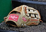 12 April 2008: Washington Nationals' third baseman Ryan Zimmerman's glove rests on the steps of the dugout during a game against the Atlanta Braves at Nationals Park, in Washington, DC. The Braves defeated the Nationals 10-2...Mandatory Photo Credit: Ed Wolfstein Photo