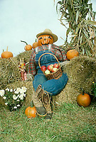 Pumpkin scarecrow and Halloween decoration greets the people walking door to door.