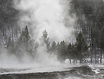 Steam rises from hot pools in Yellowstone National Park.