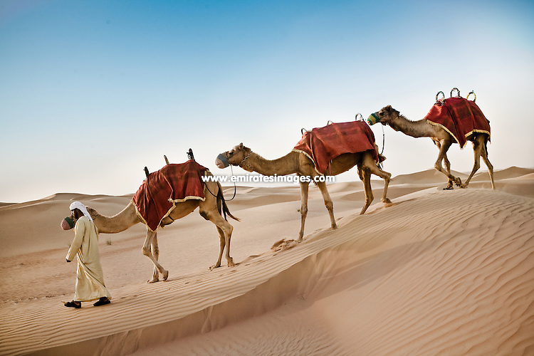 Camel Race Dubai Schedule http://dcradio.org.uk/uae-camel