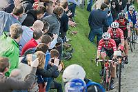 Fabio Felline (ITA/Trek-Segafredo) piloting John Degenkolb (DEU/Trek-Segafredo) up the Oude Kwaremont<br /> <br /> 60th E3 Harelbeke (1.UWT)<br /> 1day race: Harelbeke &rsaquo; Harelbeke - BEL (206km)