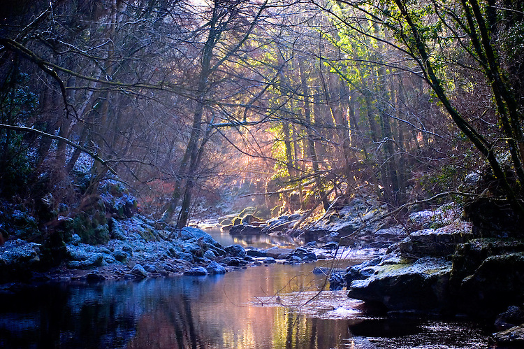 Sunlight shining through trees in a wood onto a river in winter with snow