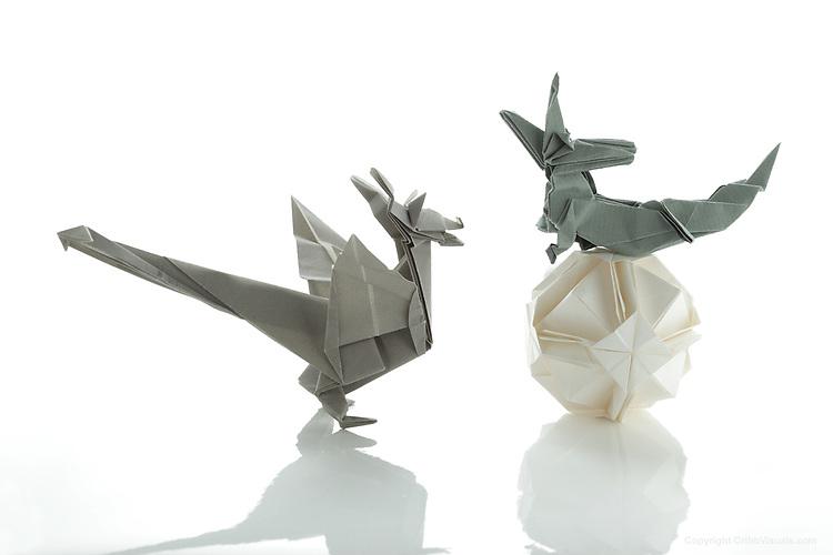 Origami Designs