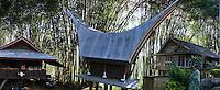 traditional Toraja house called Tongkonan in  bamboo forest, Toraja land, Sulawesi, Indonesia