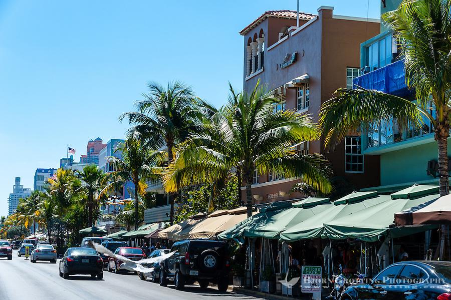 List Of South Beach Hotels On Ocean Drive