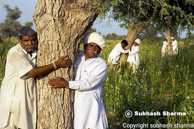 BISHNOI : The Protectors Of The Environment