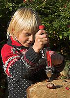 Kinder basteln mit Kastanien, Junge bohrt mit Handbohrer Loch in Kastanie